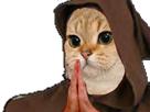 http://image.noelshack.com/fichiers/2018/02/7/1515922377-cat10.png