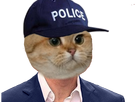http://image.noelshack.com/fichiers/2018/02/7/1515968459-chatpolice.png