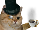 https://image.noelshack.com/fichiers/2018/03/1/1516040967-chat-riche-cafe-oeil.png