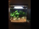 Aquarium du futur popoy 1516914402-img-0125