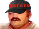https://image.noelshack.com/fichiers/2018/07/7/1518920431-risitas-cap-parano-krankin.png