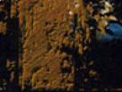 http://image.noelshack.com/fichiers/2018/09/7/1520196988-49-k8y6jdua.png