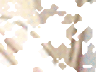 http://image.noelshack.com/fichiers/2018/12/2/1521562348-51-j3m5z6u2.gif
