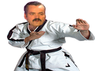 https://image.noelshack.com/fichiers/2018/14/1/1522672196-risi-karate1.png