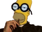 https://image.noelshack.com/fichiers/2018/14/6/1523134036-homer-qlf-intelligible.png