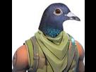 https://image.noelshack.com/fichiers/2018/15/3/1523444299-skinpigeon.png