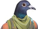 http://image.noelshack.com/fichiers/2018/15/3/1523444368-skinpigeon.png