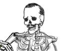https://image.noelshack.com/fichiers/2018/16/7/1524400730-risisquelette.png