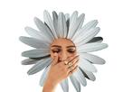 https://image.noelshack.com/minis/2018/18/1/1525095615-fleur.png