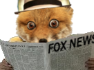 http://image.noelshack.com/fichiers/2018/18/2/1525135070-1507725324-fox-102-v2.png