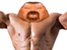 https://image.noelshack.com/fichiers/2018/18/4/1525337317-avortin-muscle.png