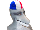 https://image.noelshack.com/fichiers/2018/19/6/1526139845-dauphin-partiote-francais.png