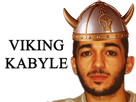 http://image.noelshack.com/fichiers/2018/20/1/1526306996-viking-kabyle.png
