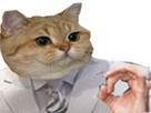 https://image.noelshack.com/fichiers/2018/23/3/1528241895-zemmourcat.png