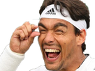 http://image.noelshack.com/fichiers/2018/23/5/1528453230-fognini.png