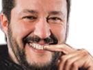 https://image.noelshack.com/minis/2018/23/7/1528660668-salvini-qlf.png