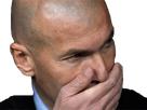 https://image.noelshack.com/fichiers/2018/24/2/1528812179-zidane.png
