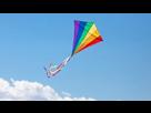 https://image.noelshack.com/minis/2018/24/3/1528922417-800x600-1703717-les-inventeurs-cerf-volant.png