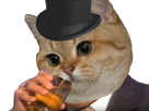 http://image.noelshack.com/fichiers/2018/24/5/1529075670-chat-alcool.png