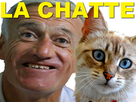 https://image.noelshack.com/fichiers/2018/24/6/1529185116-chatte.png