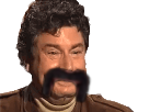 http://image.noelshack.com/fichiers/2018/25/1/1529322604-jesus-moustache.png