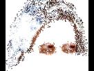 https://image.noelshack.com/minis/2018/26/2/1530010229-jesus-fou-complot-optimizegif.png