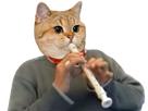 https://image.noelshack.com/fichiers/2018/28/4/1531409658-chat-flute.png
