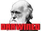 https://image.noelshack.com/fichiers/2018/31/5/1533307066-darwin.jpg