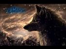 https://image.noelshack.com/minis/2018/35/7/1535893993-loup-noir-solitaire.png