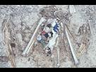 http://www.noelshack.com/2018-41-3-1539185362-cadavre-albatros-dechets-plastique.jpg