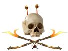https://image.noelshack.com/minis/2019/02/6/1547314557-piratestiquisitor.png