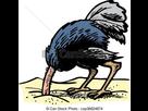 https://image.noelshack.com/fichiers/2019/02/7/1547389909-tete-sable-autruche-image-csp36624874.jpg