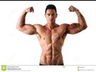 https://image.noelshack.com/fichiers/2019/03/6/1547929835-biceps.jpg