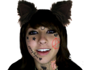 https://image.noelshack.com/fichiers/2019/05/1/1548707549-boxxy-tatoo-cat-ears.png