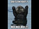 1549392416-meme-qui-sen-fout-moi-moi-moi.jpg - envoi d'image avec NoelShack