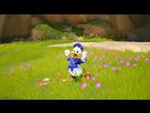 https://www.noelshack.com/2019-06-6-1549719481-3-vs-fleurs.jpg