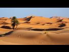 http://www.noelshack.com/2019-07-2-1549965666-desert.jpg