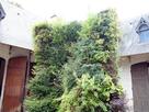 http://www.noelshack.com/2019-07-5-1550229608-patrick-blanc-spirale-vegetale.jpg