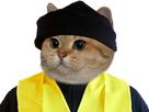 https://www.noelshack.com/2019-11-6-1552738283-1544624434-1543687906-gilet-jaune-chat.png