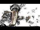 1552827805-zz-top-i-gotsta-get-paid.gif - envoi d'image avec NoelShack