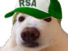 https://image.noelshack.com/minis/2019/12/1/1552948369-chien-melon10.png