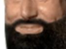 http://www.noelshack.com/2019-14-7-1554634047-barbe6.png