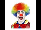 http://www.noelshack.com/2019-17-1-1555952231-1554640548-1554043718-perruque-clown-arc-en-ciel-4450.jpg