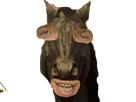 https://image.noelshack.com/fichiers/2019/20/4/1558040540-woodys-potesta-3.png