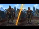 https://www.noelshack.com/2019-23-4-1559815308-kul-tiran-heritage-armor.jpg