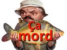 https://image.noelshack.com/minis/2019/25/2/1560833364-ca-mort-vindiou.png