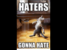 https://image.noelshack.com/fichiers/2019/25/7/1561315520-haters-gonna-hate-70496092.png