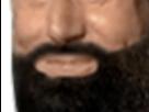 https://www.noelshack.com/2019-26-1-1561407627-barbe5.png