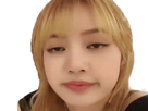 https://image.noelshack.com/minis/2019/34/3/1566380675-blackpink-lisa-captain-obvious.png