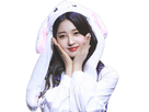 https://image.noelshack.com/fichiers/2019/36/2/1567498753-everglow-sihyeon-lapin.png